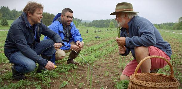 En tournage à la ferme La Macédoine, de Montebello, pour son émission Le goût du pays à Unis TV, Vincent Graton avoue être « un grand romantique » devant les merveilles élevées ou cultivées par les agriculteurs. Crédit photo : Gracieuseté d'Unis TV