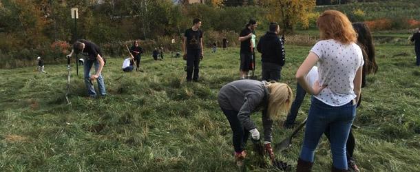 Trente-deux élèves de l'école Mgr-Euclide-Théberge à Marieville ont participé au projet lancé par l'Association du mont Rougemont.