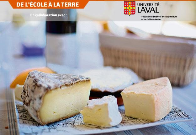 En s'intéressant à l'écosystème des fromages, les chercheurs s'attaquent aux problèmes de variation détectés chez ces derniers.