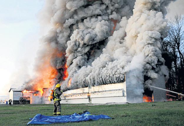 Le bâtiment qui abritait environ 30 000 poules est une perte totale. Crédit photo : Éric Beaupré