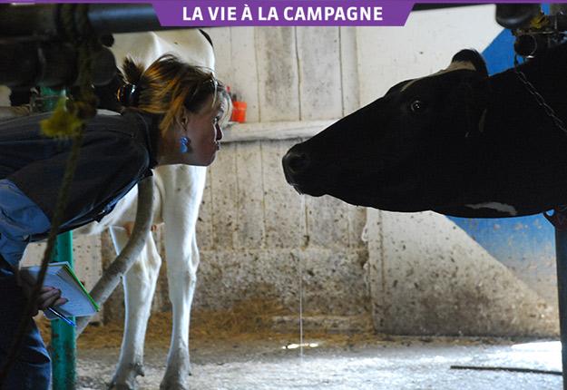 Josée Blanchette a déjà visité une ferme laitière dans le cadre d'un reportage. Photo: Gracieuseté de Josée Blanchette