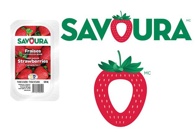 Après les tomates, voilà que les fraises Savoura font leur entrée dans les supermarchés. Crédit photo : Savoura