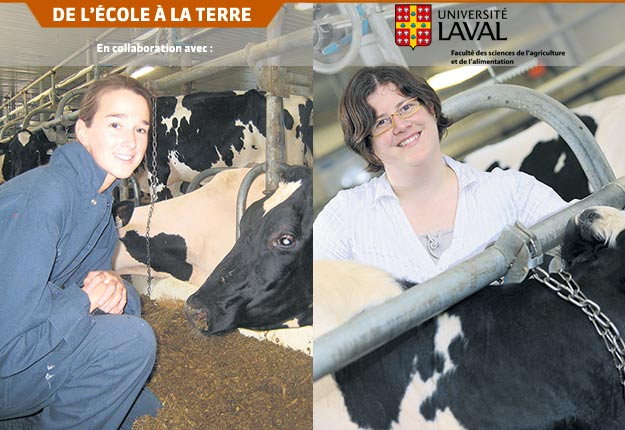 L'équipe dont font partie l'étudiante Véronique Ouellet (à gauche) et la professeure Édith Charbonneau (à droite) travaille à l'évaluation technico-économique des stratégies d'adaptation visant à minimiser l'impact du stress thermique sur les vaches laitières dans un contexte québécois. Crédit photo : FSAA et Marc Robitaille