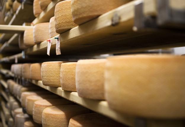 Les marchés du fromage, du beurre et de la poudre de lait seront sans doute les plus convoités par l'Australie et la Nouvelle-Zélande dans le nouveau PTPGP. Crédit : Archives/TCN