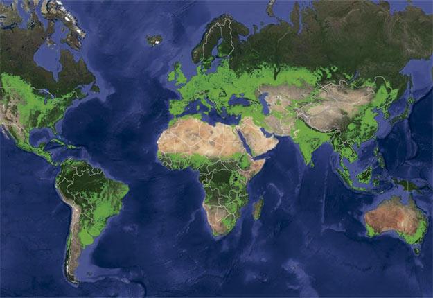 Carte des terres cultivées (en vert) dans le monde. Crédit photo : USGS