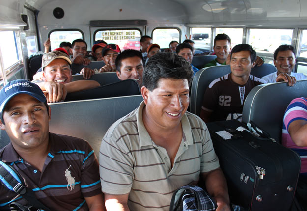 De nouvelles mesures visent à renforcer les exigences en matière de logement pour les travailleurs agricoles étrangers temporaires. Crédit photo : Archives/TCN