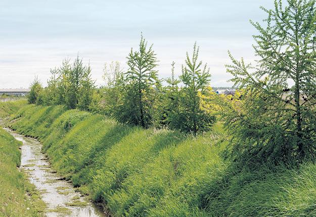 Malgré des investissements importants en agroenvironnement depuis plusieurs années, aucune compilation à jour de tout ce qui a été accompli n'est disponible.