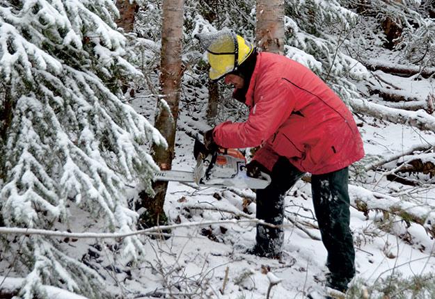 Sur cette photo, le travailleur forestier porte un casque, mais sa visière est relevée, ce qui représente un danger. Crédit photo : Guillaume Roy