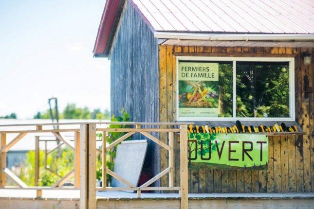Le gouvernement fédéral a recommandé à Équiterre de se départir de la gestion directe du réseau des fermiers de famille s'il ne voulait pas perdre son statut d'organisme de bienfaisance. Photo : Martin Ménard/TCN