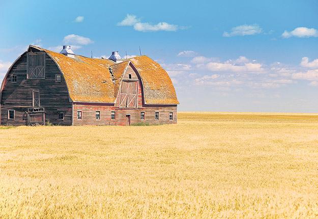 De 2002 à 2014, quelque 340000hectares de terres de la Saskatchewan sont passés des agriculteurs aux investisseurs. Crédit photo: Chris