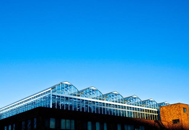 Les Fermes Lufa, qui exploitent trois serres sur toit d'une superficie totale de 138 000 pieds carrés, concluent une entente de partenariat avec La Coop fédérée. Crédit photo : Ferme Lufa