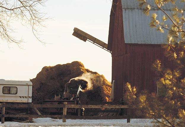 Plus d'entreprises agricoles pourraient être assujetties au Règlement relatif à l'évaluation et l'examen des impacts sur l'environnement (REEIE). Crédit photo : Archives TCN