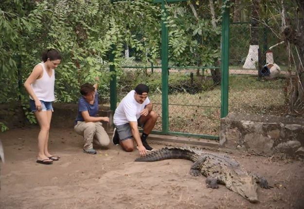 Petite visite dans un sanctuaire de crocodiles pour Jean-Christophe et Audrey.