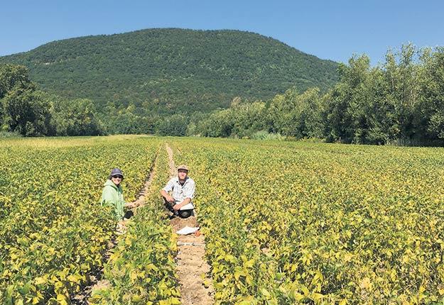 L'équipe de l'IRDA procède à la validation pédologique d'un site de la série de sols Joseph dans la région de la Montérégie. Gracieuseté de l'IRDA