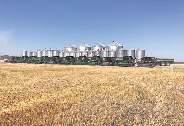 En Saskatchewan, Travis Heide convertit présentement ses 40000acres en cultures à la régie biologique. Crédit photo : Travis Heide