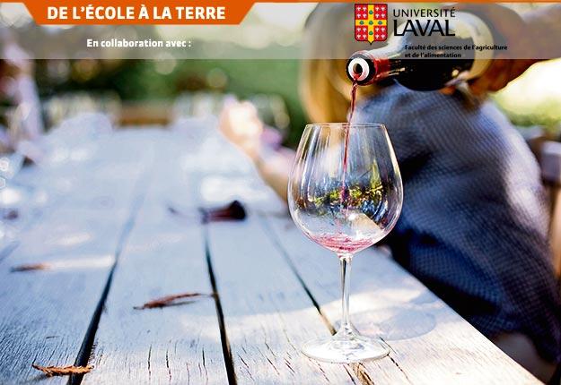 En utilisant le marc blanc en cofermentation avec un cépage rouge, des chercheurs tentent de rendre les vins rouges de cépages hybrides plus satisfaisants pour les consommateurs.