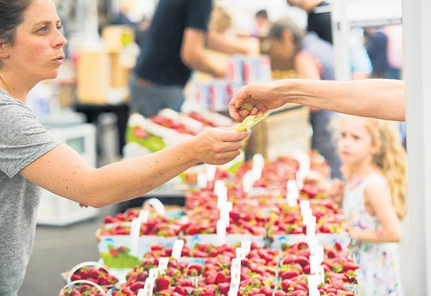 Le prix des fraises biologiques peut atteindre 8,84$/kg en kiosque. Crédit photo : Martin Ménard/TCN