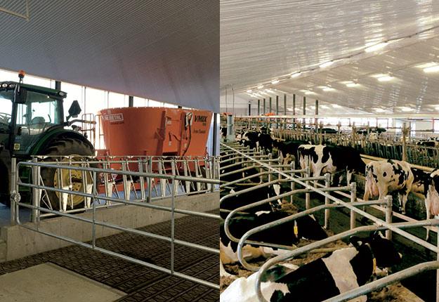Deux fermes laitières, deux systèmes bien différents.