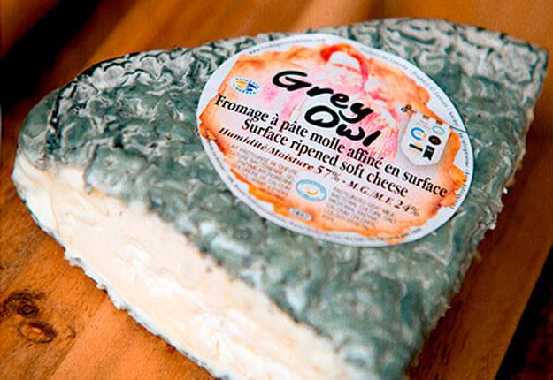 Le fromage Grey Owl. Crédit photo: Éric Labonté, MAPAQ