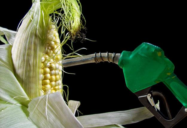 L'essence avec 15 % d'éthanol devrait être autorisée à l'année aux États-Unis.