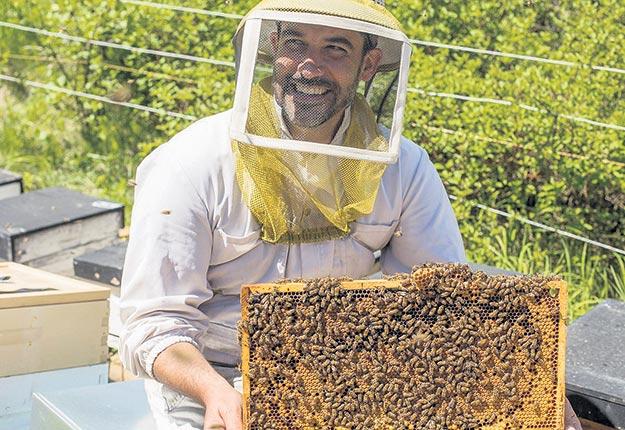 D'après le conseiller apicole Nicolas Tremblay, le taux de mortalité élevé constaté dans certains ruchers ne serait pas causé par l'utilisation de pesticides en grandes cultures, mais plutôt par des facteurs météorologiques. Crédit photo : Gracieuseté de Nicolas Tremblay