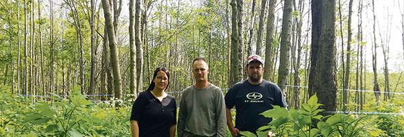 Judith Jetté, Éric Filion et Frédéric Jetté, des Sucreries Jetté à Mirabel, sont inquiets de voir leurs érables affaiblis par la livrée des forêts.