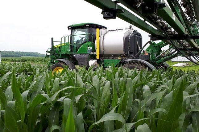 La progression du rendement moyen de maïs reposerait pour 40 % sur le perfectionnement des pratiques culturales et pour 60 % sur la génétique. Crédit photo : Ordre des agronomes du Québec