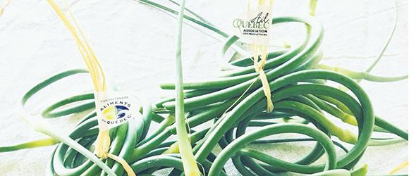Il existe plusieurs produits dérivés à base d'ail, notamment la fleur d'ail. Crédit photo: Géli-Ail