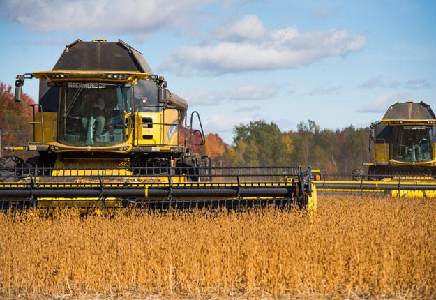 La guerre commerciale entre les États-Unis et la Chine a déjà des impacts sur le prix du soya. Crédit photo : Martin Ménard / Archives TCN