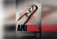 La pince utilisée pour effectuer la castration à froid des veaux et des agneaux est illustrée sur l'une des affiches de la campagne. Crédit photo : gracieuseté de la SPCA