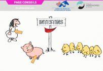 Image tirée de la vidéo intitulée Les alternatives qui mijotent au labo: Ce que les chercheurs vous concoctent!