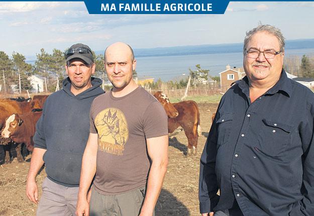 Sylvain, Mathieu et Martin Gauthier sont soucieux de faire perdurer la ferme familiale. Crédit photos: Émélie Bernier