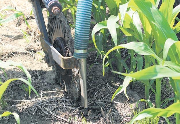 En juin, le producteur testait un semoir de sa dernière invention pour l'intercalaire de légumineuses dans le maïs. Crédit photos : Myriam Laplante El Haïli/TCN