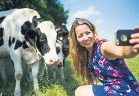 Émilie-Sophie Parenteau compte plusieurs « personnes de la ville » parmi ses amis Facebook. Elle se fait un devoir d'expliquer tout le travail accompli à la ferme pour nourrir la population, et du coup, l'importance d'encourager les producteurs d'ici. Crédit photo: Martin Ménard/TCN