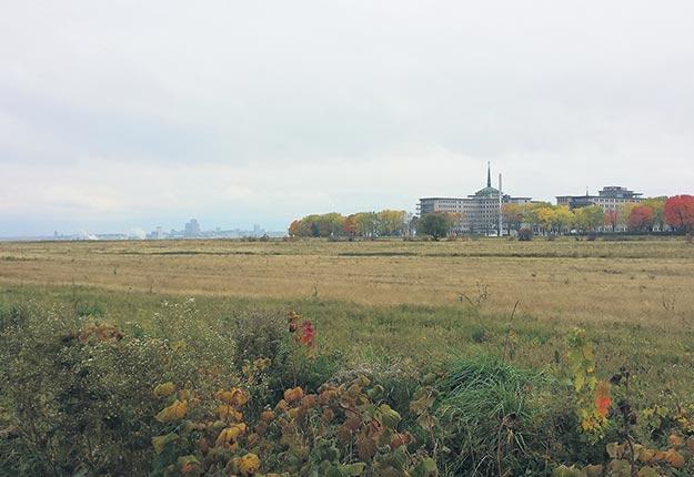 Le maire Régis Labeaume persiste à dire qu'il est essentiel de dézoner des centaines d'hectares pour accueillir plus de résidents à Québec dans les années à venir. Crédit photo: Archives TCN