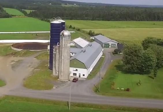 Le drame s'est produit à la ferme Rodveil Holstein, située sur le rang de Léry, à Saint-Simon-les-Mines, en Beauce.