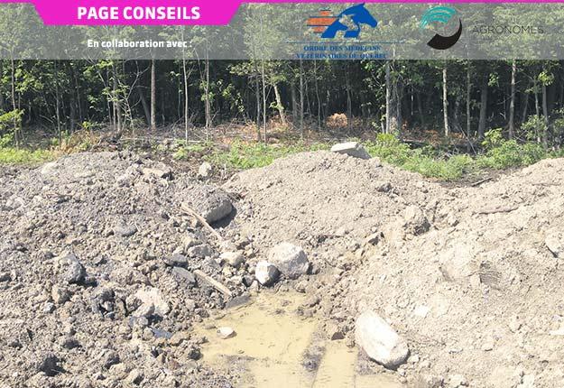 Roches et débris de construction dans un sol de remblai de mauvaise qualité, suggérant une possible contamination chimique. Crédit photo: PleineTerre