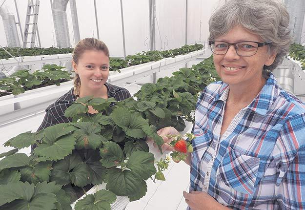 Paule Lebeuf et sa fille Catherine Côté ont eu un coup de cœur pour une terre avant de décider de devenir productrices de fruits. Photos : Émélie Bernier