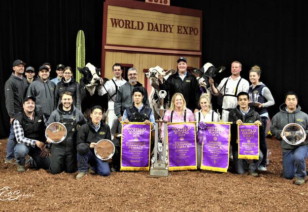 Toute l'équipe de la Ferme Jacobs pose fièrement avec les récoltes de la World Dairy Expo de Madison au Wisconsin. Crédit photo : Carl Saucier