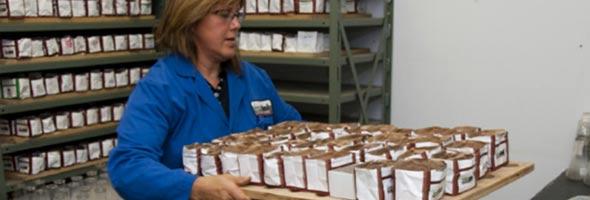 Les échantillons de terre prélevés au champ sont ensuite analysés en laboratoire.