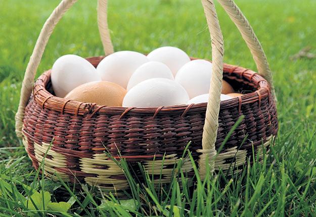 La Régie devra trancher la question de la hausse de la production hors quota dans les œufs, le poulet et le dindon. Crédit photo : Archives/TCN