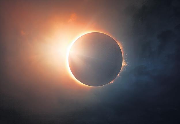 Au moment précis de l'éclipse totale, les chercheurs ont relevé un seul bruit de bourdonnement sur une période de trois minutes. Crédit photo : Shutterstock