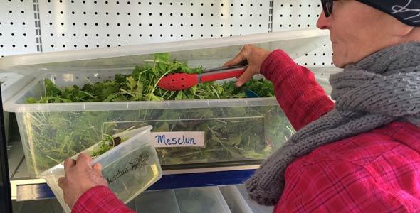 Le plat précalibré permet aux clients de mesurer leurs portions de mesclun.