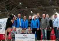 Jacobs Windbrook Aimo, de la Ferme Jacobs à Cap-Santé, a été sacrée Championne suprême à la Royal Agricultural Winter Fair de Toronto. Crédit photo : The Bullvine