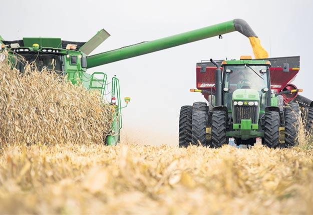La production de maïs enregistre de hauts rendements cette année, surtout dans les terres argileuses, et c'est la 5efois en 30ans que les agriculteurs peuvent vendre leur maïs à la récolte à au moins 200$ la tonne. Crédit photo : Martin Ménard/Archives TCN