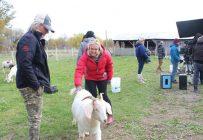 Joanne Forgues, la productrice de la série, prend très au sérieux son nouveau rôle de propriétaire de ferme. Elle revient la fin de semaine pour nourrir elle-même les animaux. Crédit photos : Ariane Desrochers / TCN