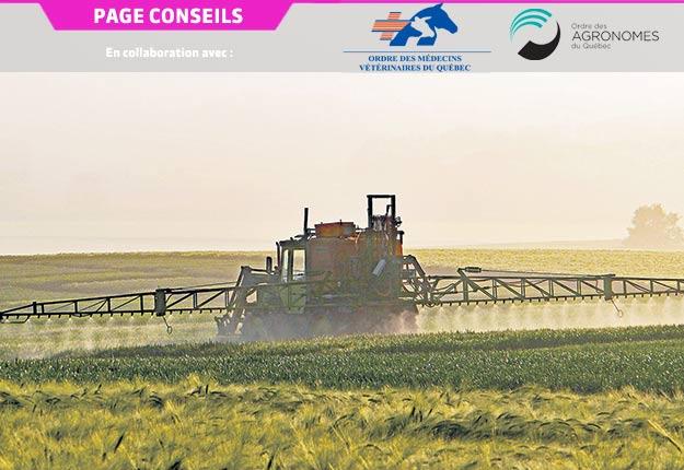L'agronome justifie ses recommandations en se basant sur l'historique des champs et les solutions de rechange possibles.