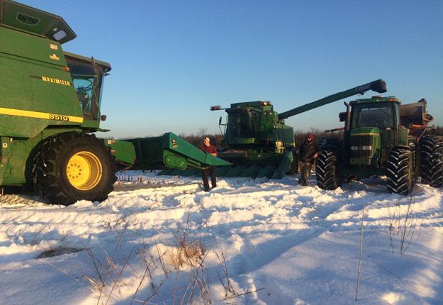 Érick Ménard n'a jamais effectué la récolte de maïs aussi tardivement. Il espère que la neige fondra pour faire de même dans deux champs de soya. Crédit photo : Gracieuseté d'Érick Ménard