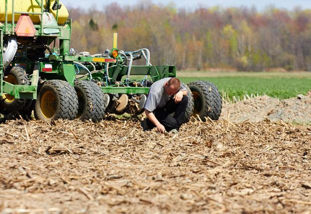 Le temps file, et les producteurs américains devront tôt ou tard se décider sur leur choix de semis. Crédit photo: Archives/TCN