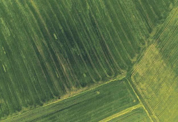 L'Institut de technologie agroalimentaire propose une nouvelle formation afin de soutenir les producteurs agricoles qui souhaitent améliorer leurs travaux de drainage. Crédit photo : Archives/TCN